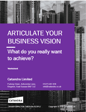 Articulate your Business Vision